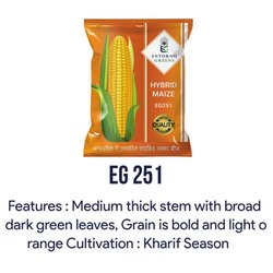 EG 251 Hybrid Maize Seeds, Packaging Type: Packet, Packaging Size: 1 Kg And 2 Kg