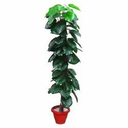 Artificial Green Polyester Fabric Money Plant, For Decoration