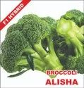 Dried Broccoli Seeds Alisha, Packaging Size: 10 Gram