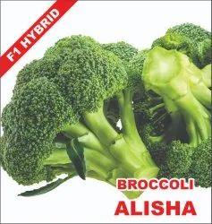 BROCCOLI SEEDS ALISHA