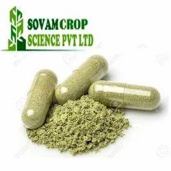 Sovam Herbal Gymnema Capsules, Packaging Type: Bottle
