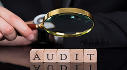 Consulting Firm Internal Audit