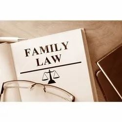 Family Law Attorney Service, 0-2 Years, Application Usage: Professional