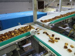 Conveyor Belt for Food Industry