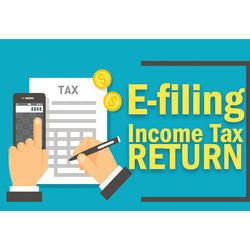 Online Income Tax Filing Service, in Pan India, Company