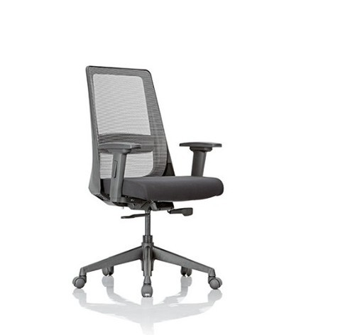 86670431aea Black Feather Lite Amaze With Lumbar Support Office Chairs