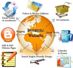 Basic Business Site Static/Dynamic Website Design & development