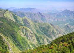 Mountain Tour Package, Kerala
