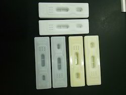 Rapid Diagnostic Cassette
