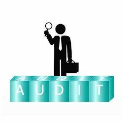 Individual Consultant Statutory Audit Services, Delhi