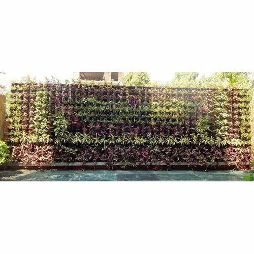 Bio Garden Wall Services Bio Wall R S Enterprises New Delhi