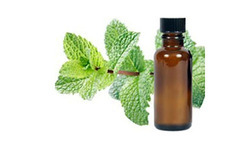 Spearmint Oil Rectified L-Carvone 90%