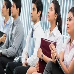 Diploma IT Placement Service