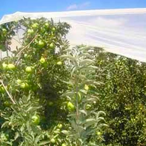 Anti Hail Net Agriplast Manufacturer In Jankipuram