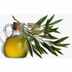 印度蒸汽蒸馏桉树香气芳香疗法和香水
