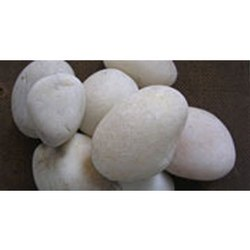 Natural River Valley White Pebbles
