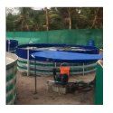 Aquaculture Air Blower