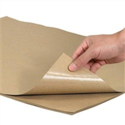 Poly Coated Kraft Paper