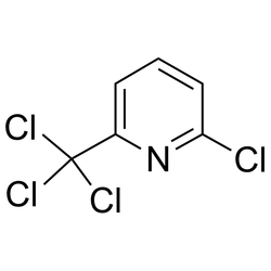 White 2-Chloro-6-(trichloromethyl) Pyridine, Packaging Type: Drum