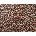 Brown Masoor, High In Protein