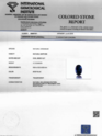 Blue Sapphire - 3.13 Carat IGI Certified
