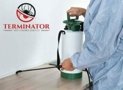 Residential 3 Year Anti Termite treatment, in Rajasthan, 5 Liter