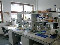 Stain Resistant Biological And Clinical Lab