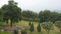 1 BHK  Farm Land &  Houses