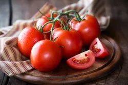 Hybrid Cool Farm Fresh Tomatoes, For Food, 20 Kg