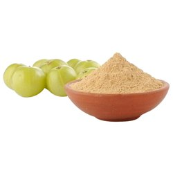 Emblica Officinalis Amla Extract, Packaging Size: 1 Kg, Packaging Type: Packet