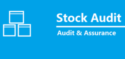 Inventory Audit Service