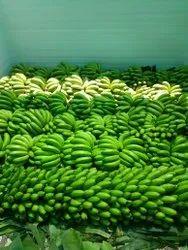 G9 Cavendish Banana