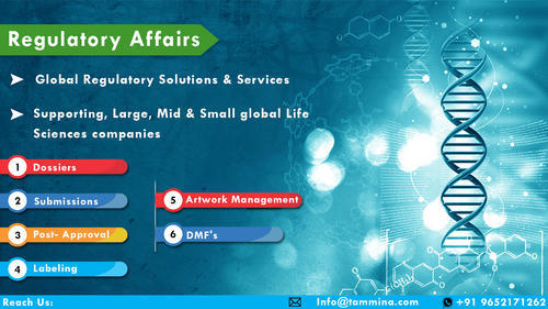 Regulatory Affairs Service - Product Labeling Service IT