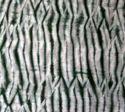 Handmade Tie Dye Cotton Fabric