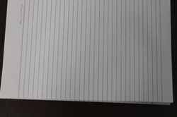 ruled paper suppliers in delhi