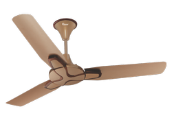 Jasmine Ceiling Fan Gel Gold