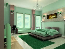 High Sheen White Emulsion Wall Painting