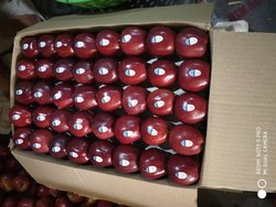 A Grade Shimla Kinnaur Apple, Packaging Type: Carton, Packaging Size: 15kg