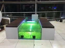 Plecostomus Black Doctor Fish Spa Setup & Garra Rufa Fish Spa Setup, Packaging Type: Thermocol, 2 Years