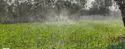 Spray Irrigation System - 40 mm