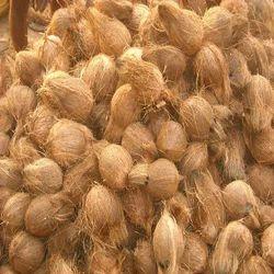 Semi Husked Mature Coconut
