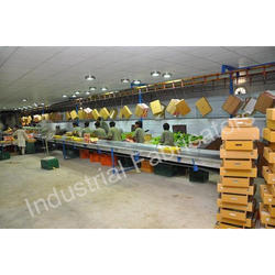 Fruit and Vegetable Dehydration Plant