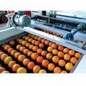 Orange waxing and Grading Machine