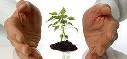 Tech loan Assist website Development Service