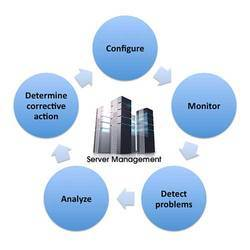 Data Management Consulting Services