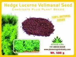 Bokashi Bran Natural Hedge Lucerne Velimasal Grass Seed (500 g)