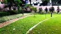 Landscape Grass Carpet
