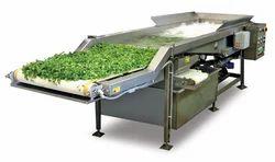 Vegetable & Fruit Washing Line