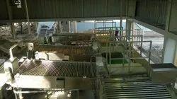 Fruit & Vegetable Handling Conveyor System