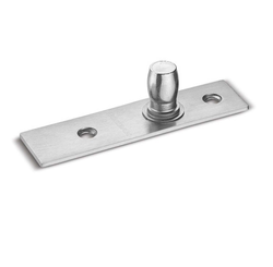 Top Pivot For Patch Fitting Door